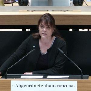 Rede im AGH am 20.02.2020 - Berlin sagt Danke! (?)